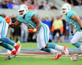 Cameron Wake 2013 Action Photo