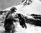 King Kong vs. Godzilla Photo