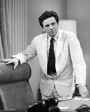 Peter Falk - The Trials of O'Brien Photo