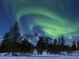 Aurora Borealis Over Nova Mountain Wilderness, Troms, Norway Photographic Print by Stocktrek Images