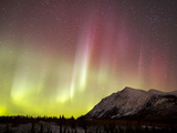 Red Aurora Borealis Over Carcross Dessert, Canada Photographic Print by Stocktrek Images