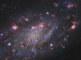 NGC 2403, a Spiral Galaxy in Camelopardalis Photographic Print by Stocktrek Images