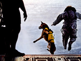 A U.S. Soldier And His Military Working Dog Jump Off the Ramp of a CH-47 Chinook Photographic Print by Stocktrek Images