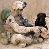 A Dog Handler Gives Water To His Dog While On a Patrol in Afghanistan Photographic Print by Stocktrek Images