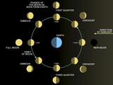 A Diagram Showing the Phases of the Earth's Moon Reproduction photographique par Stocktrek Images