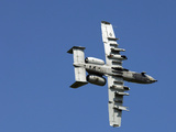 An A-10 Thunderbolt Maneuvers Through the Sky Photographic Print by Stocktrek Images