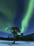 Aurora Borealis, Forramarka, Troms, Norway Photographic Print by Stocktrek Images