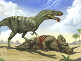 A Gorgosaurus Libratus Stands Over the Dead Body of a Centrosaurus Photographic Print by Stocktrek Images