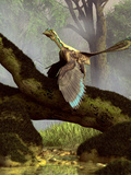 An Archaeopteryx On a Log Above a Stream Photographic Print by Stocktrek Images