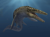 Mosasaurus Hoffmanni Swimming in Prehistoric Waters Photographic Print by Stocktrek Images