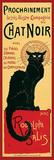 Chat Noir Affiches