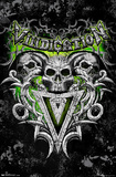Skulls Vindication Poster Lámina