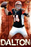Andy Dalton Cincinnati Bengals Plakater