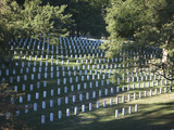 Arlington National Cemetery, Arlington, Virginia, USA Photographic Print by Stocktrek Images
