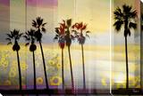 Boardwalk Stretched Canvas Print by Parvez Taj