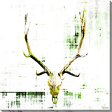 Antler Stretched Canvas Print by Parvez Taj