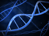 Microscopic View of DNA Photographic Print by Stocktrek Images