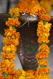 Garlanded Snake Sculpture Photographic Print