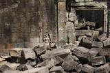Ruins at Ta Prohm Photographic Print