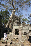 Strangler Fig Trees and Creeping Lichens Devour Ruins at Ta Prohm Photographic Print