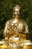Sitting Buddha Statue Photographic Print