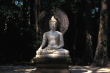 Buddha in Wat Suanmokh Forest Monastery Photographic Print