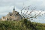 Mont Saint Michel in Winter Photographic Print
