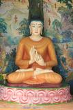 Buddha, Dharmikarama Burmese Temple, Penang Photographic Print