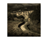Caunes Vineyards Photographic Print by David Richards
