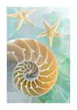 Seaglass 2 Plakat af Alan Blaustein