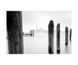 Wood In Water Photographic Print by Francesco Carovillano