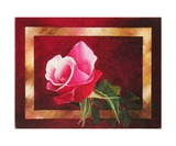 Au Nom De La Rose Photographic Print by Frank Godille