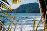 Costa Rica Beach Surfing Waves Photo