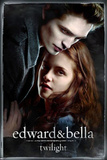 Twilight Movie Poster Posters