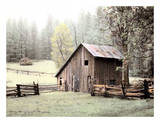 Barn near Sonora Art by Laura Culver