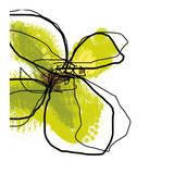 Green Petals Affiches par Jan Weiss