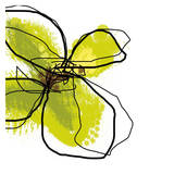 Green Petals Plakater af Jan Weiss