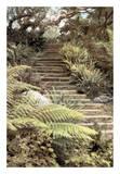 Secret Steps Prints by Laura Culver