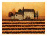 Fall Vineyard Posters by Lowell Herrero