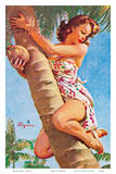 Pick of the Crop (Up a Tree) - Hawaiian Pin Up Girl Posters by Gil Elvgren