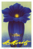 St. Moritz, Schweiz (Switzerland) - Blue Trumpet Gentian Flower Posters by Leo Keck