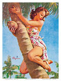 Pick of the Crop (Up a Tree) - Hawaiian Pin Up Girl Prints by Gil Elvgren