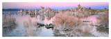 Mono Lake Sunset Poster by Alain Thomas