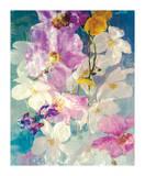Seaborn 76 Prints by Andrzej Pluta