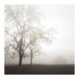 Farmland, Appalachia, 2013 Prints by Nicholas Bell