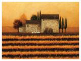 Vignes à l'automne Posters par Lowell Herrero