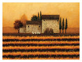 Fall Vineyard Art by Lowell Herrero