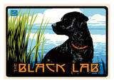 Black Lab Posters by Laura Wilder