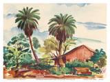 Near Moanalua Gardens Honolulu, Hawaii - United Air Lines Prints by Joseph Fehér