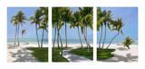 Islamarada Triptych Posters by John Ketley